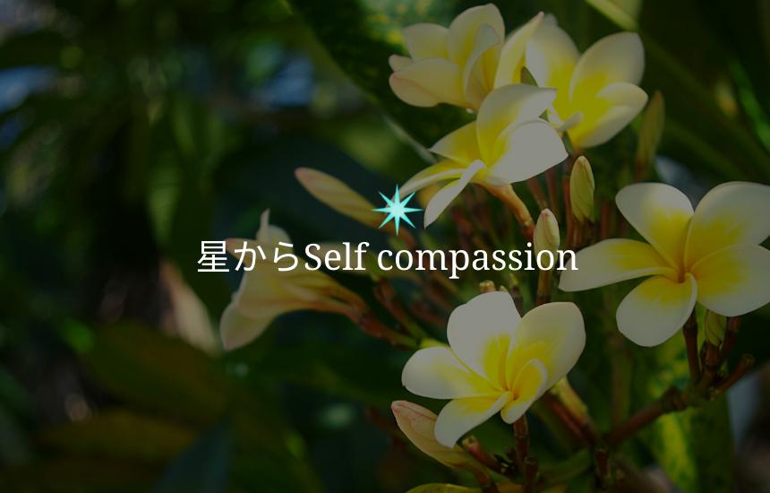 星からself compassion